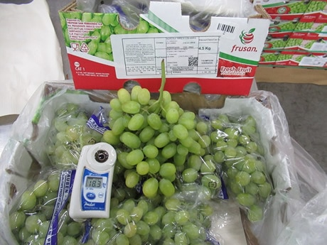 Insufficient Supply of White Grapes